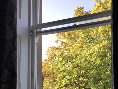 Fenster in Glasgow